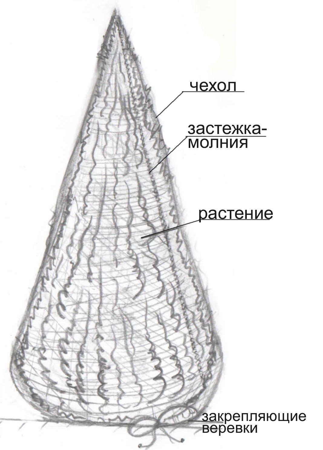этикетка-2